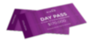 day pass 3.png