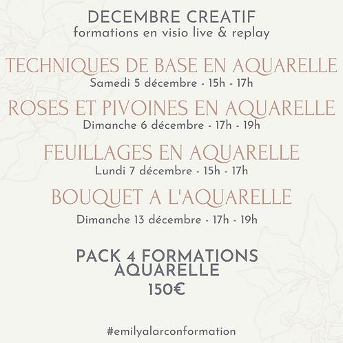 Pack de 4 formations aquarelle en ligne
