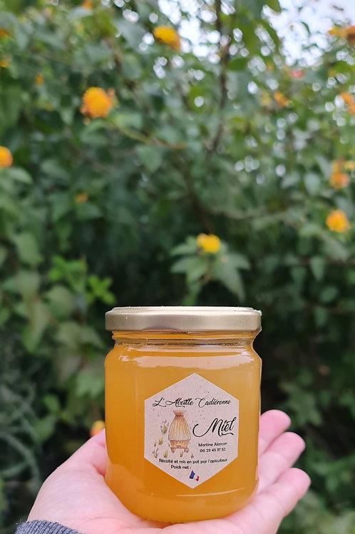 Miel de Provence année 2020, 250g