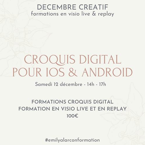 Formation croquis digital - IOS & Android