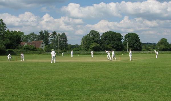 Cricket 3.JPG