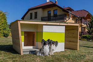 Fatima - RAFABO LUXURY KENNEL.jpg