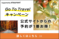 GO TO  TRAVEL NAVII.png