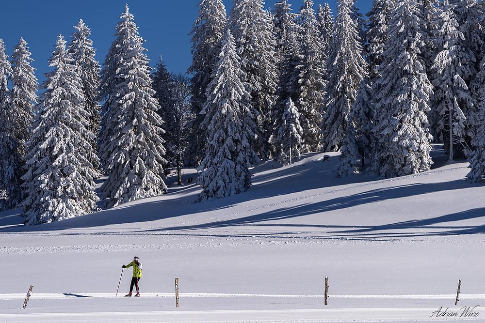 Langlauf auf dem Mont Crosin im Berner Jura