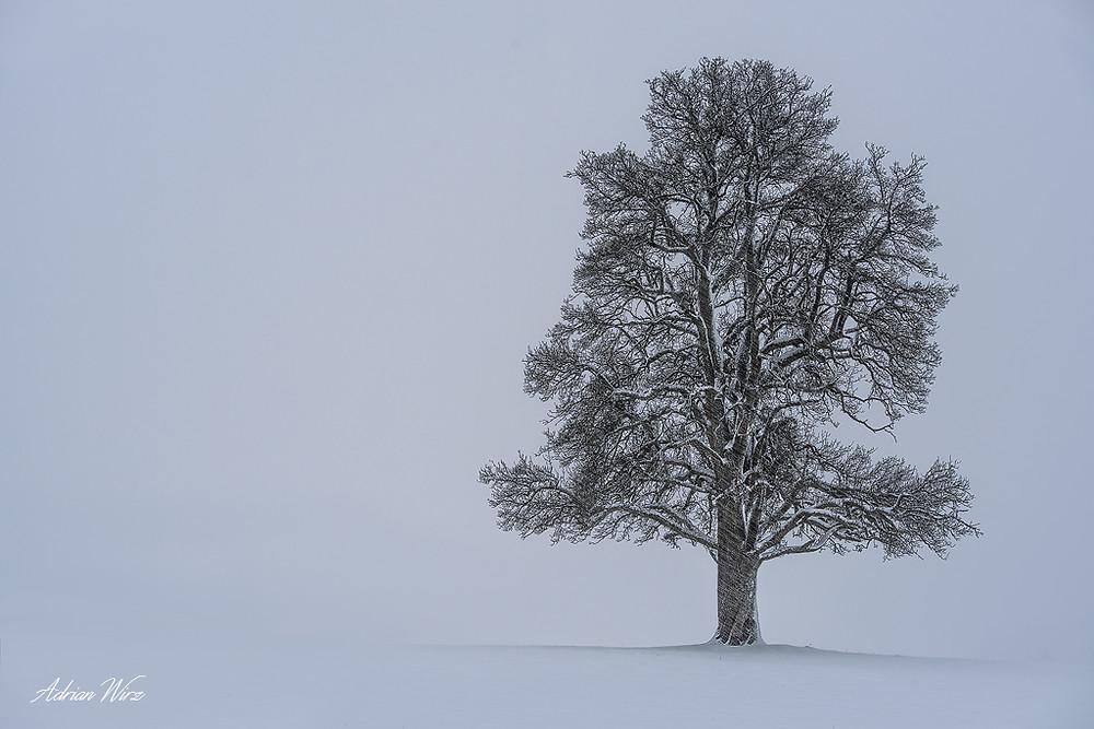 Rünenberg-Schneefall