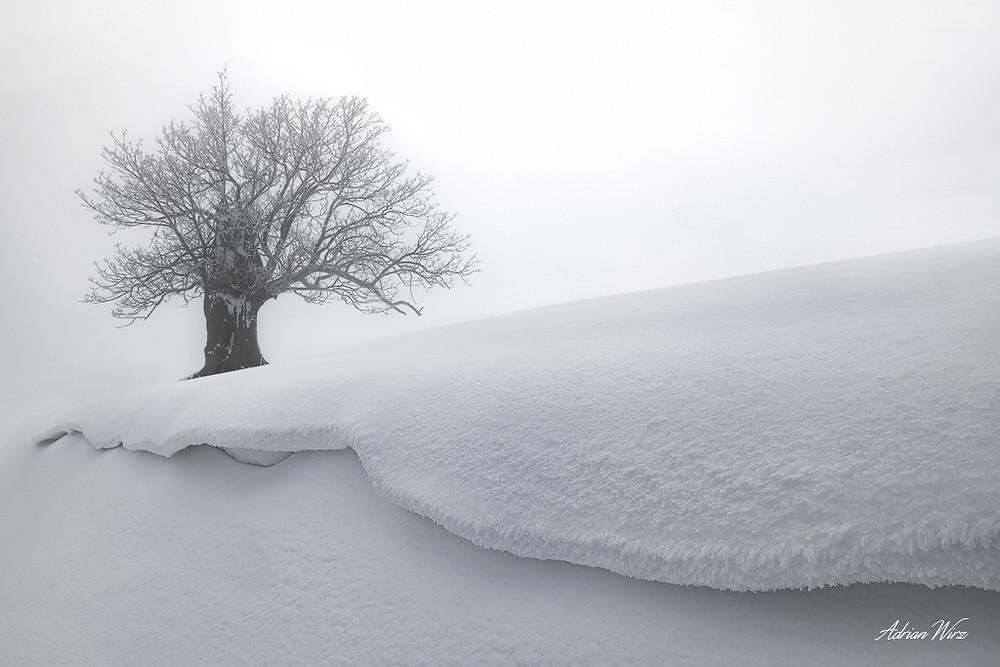 Schneeverwehungen Baselbieter Jura
