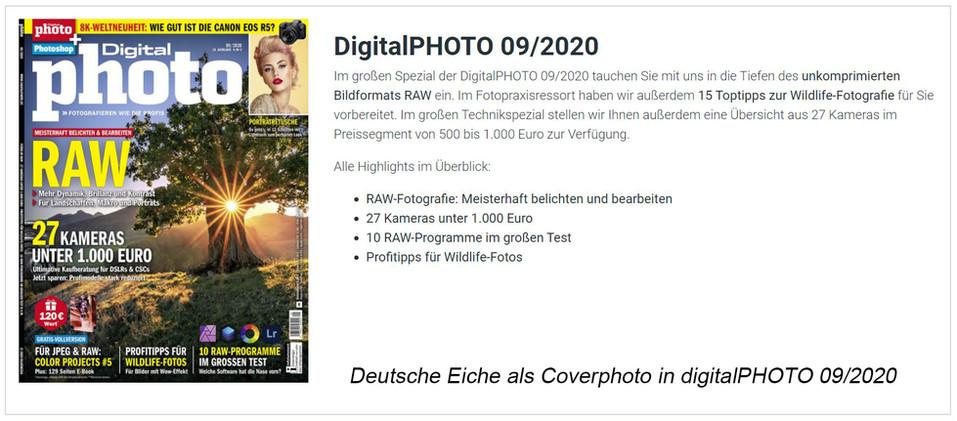 digitalphoto1.jpg