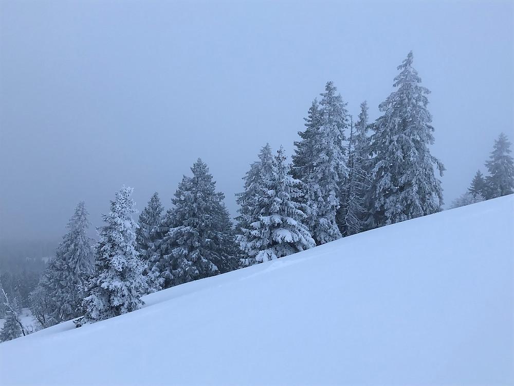 Tête de Ran im Neuenburger Jura