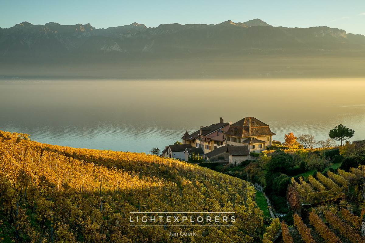Lavaux-Workshop