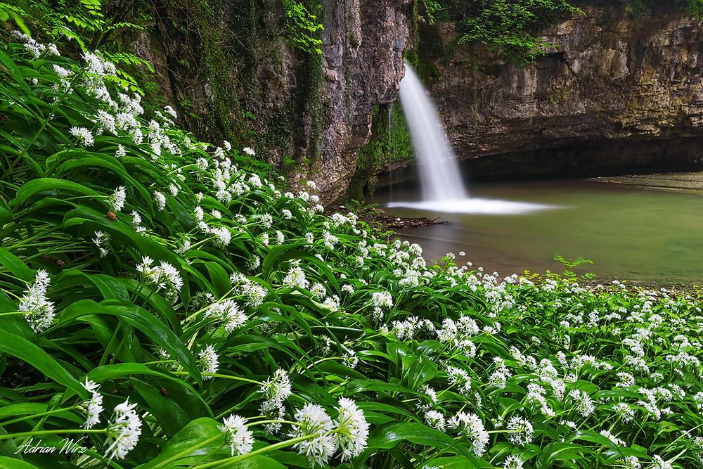 Wasserfall Giessen bei Kilchberg im Kanton Baselland