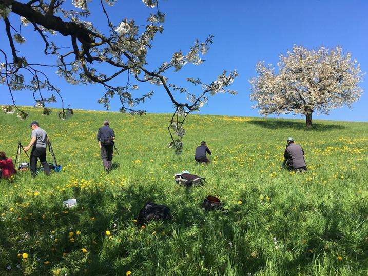 Workshop Blütenzauber