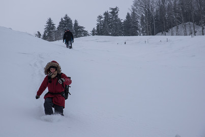 Winter Workshop.jpg