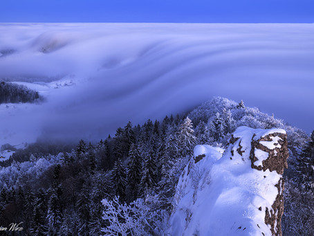 The Fog flows again
