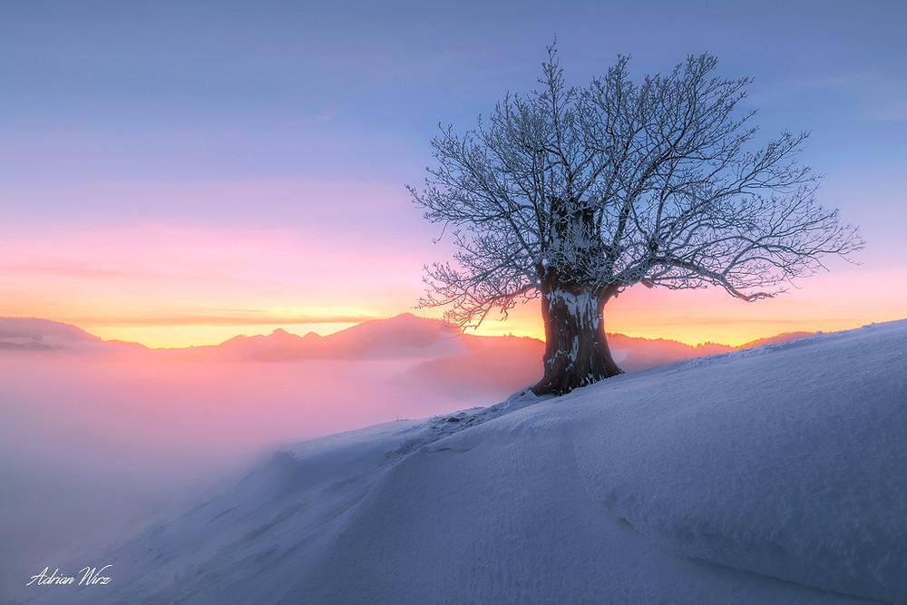 Winter im Baselbiet