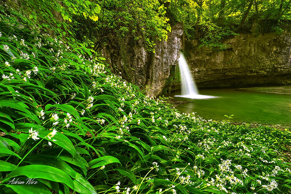 Wasserfall Giessen bei Kilchberg im Kanton Baselland.