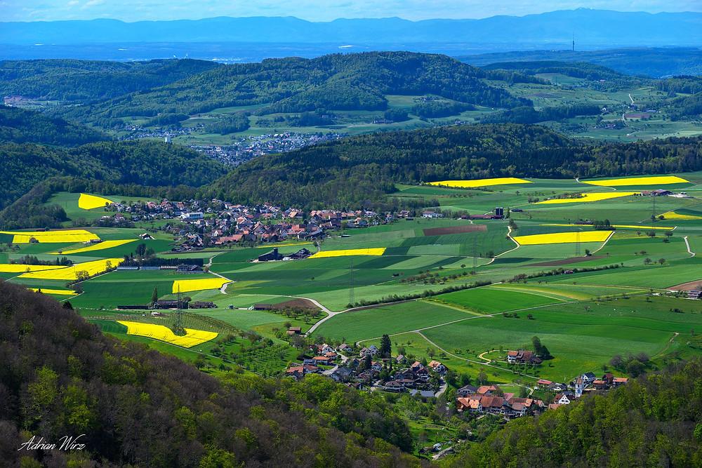 Frühling im Baselbiet
