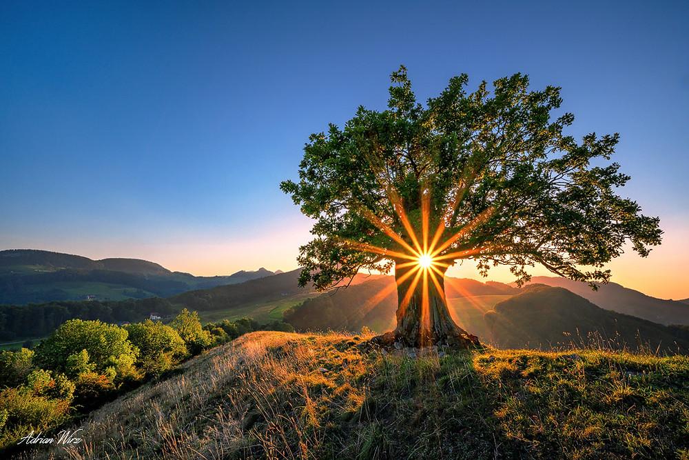 Sonnenuntergang im Kanton Baselland