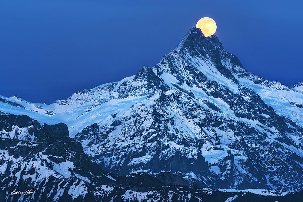 Schreckhorn im Berner Oberland