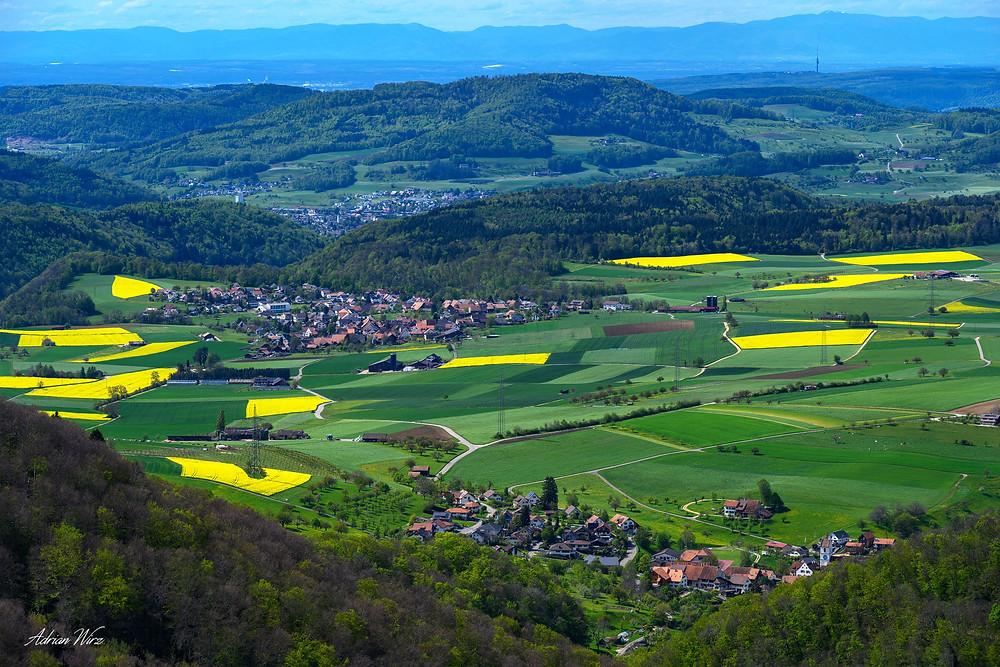 Blick auf Wenslingen im Kanton Baselland