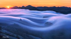 Baselland - Nebelwelle