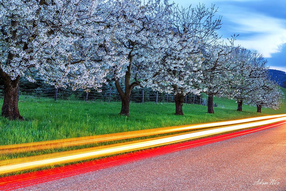 Leuchtspuren vorbeifahrender Autos