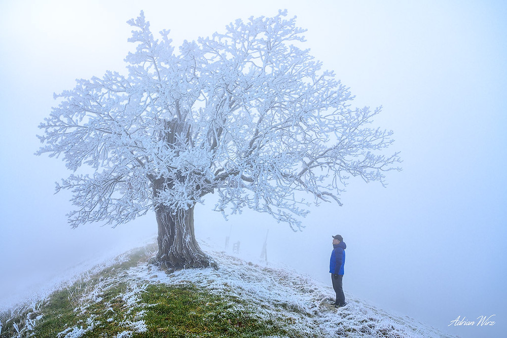 Nebel im Baselbieter Jura