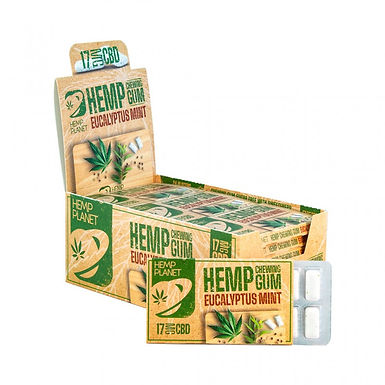Chewing Gum Menthe