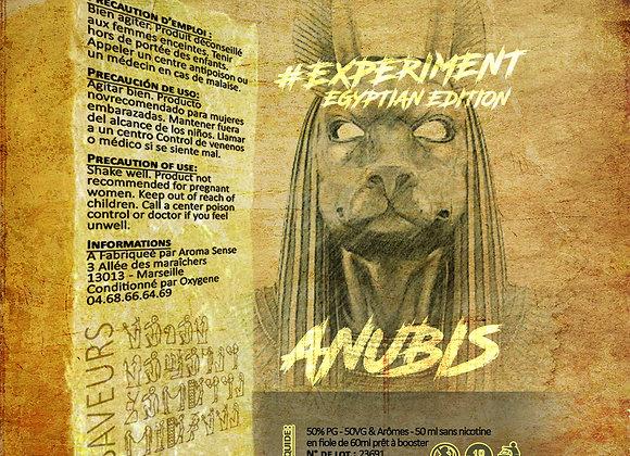 Experiment - #Egyptian Anubis