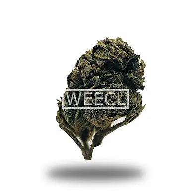 Weecl - Fleurs CBD V2 6% CBD (2gr)