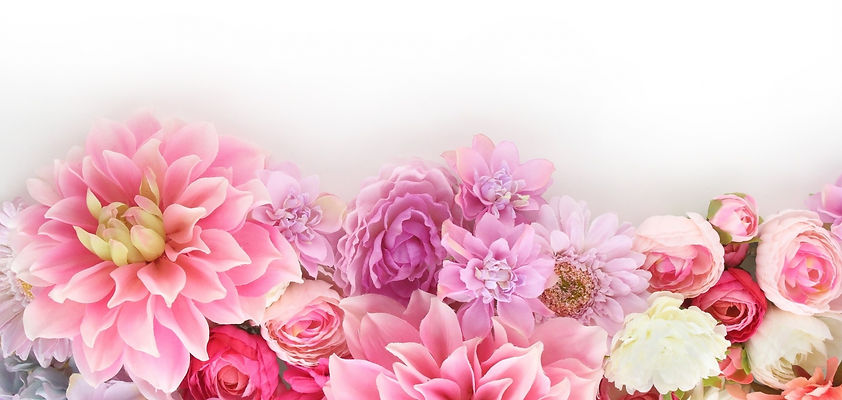 美しいまどかの花