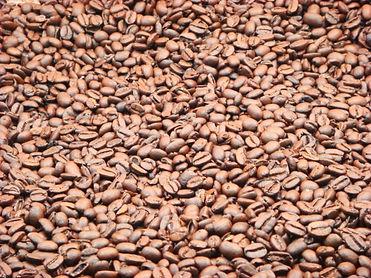 コーヒー豆ONLY.JPG