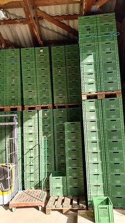 Kartoffelkombinat 3.2020Kartoffelkombinat ELLA von der HAIDE
