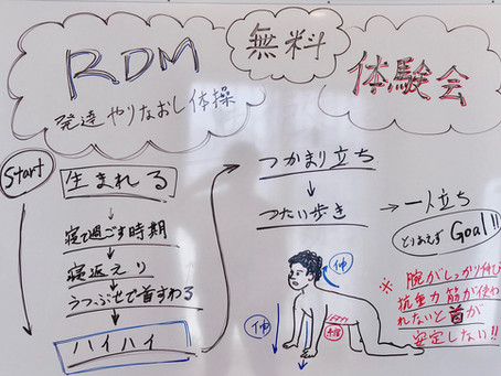 RDMオンライン体験会開催レポート