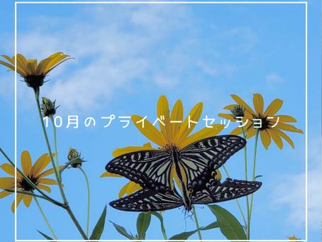 10月 プライベートセッションのご案内 / Ai Watanabe