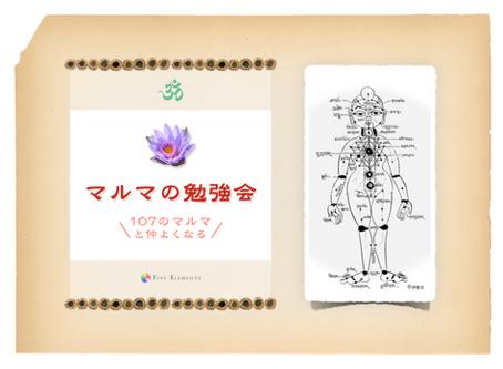 マルマの勉強会 〜107のマルマと仲よくなる〜 ONLINE