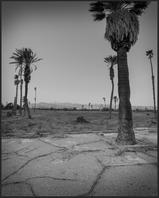 Palm Springs Country Club