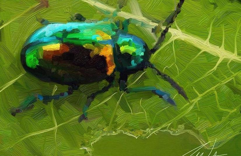 Beetle (2014)
