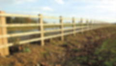 fencing .jpg