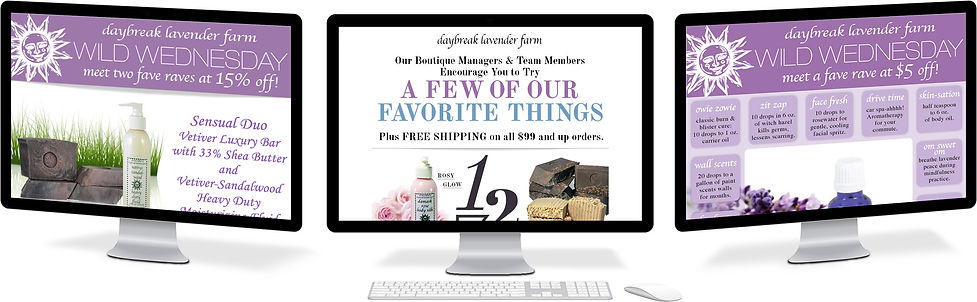 Daybreak Lavender Farm promotional email design