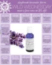 Daybreak Lavender Farm lavender oil email design