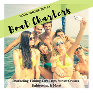 Boat Charters (2).png