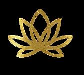 Lotus Theory LLC