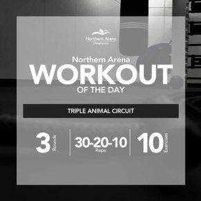 Workout At Home - Triple Animal Circuit
