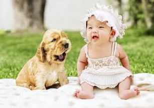 Baby Naming and Ceremonies with Pets wit