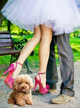 Weddings%20with%20Pets%20with%20Celebrant%20Angie%20Dand_edited.jpg