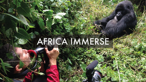 AFRICA IMMERSE