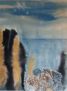 Nr. 578. Havets blomster.jpg