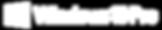 logo-Windows2.png