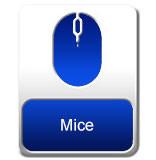 Mice-Eng.jpg