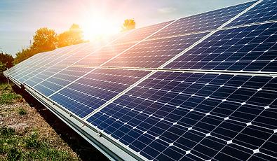 solar panel farm.png